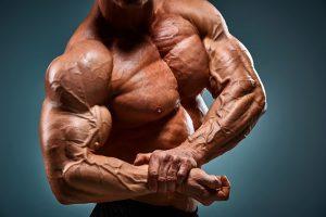 El mejor Ejercicio para el Envejecimiento de los Músculos